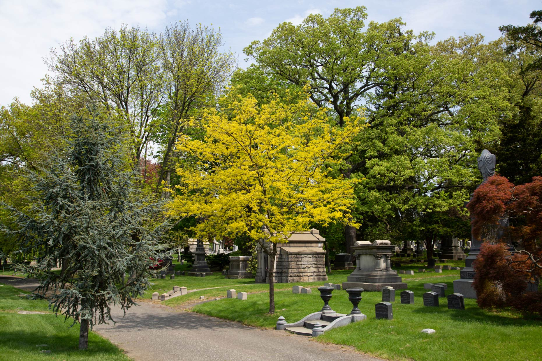 Woodlawn-Cemetery -Landscape-Architecture-Photographer-Caryn-B-Davis