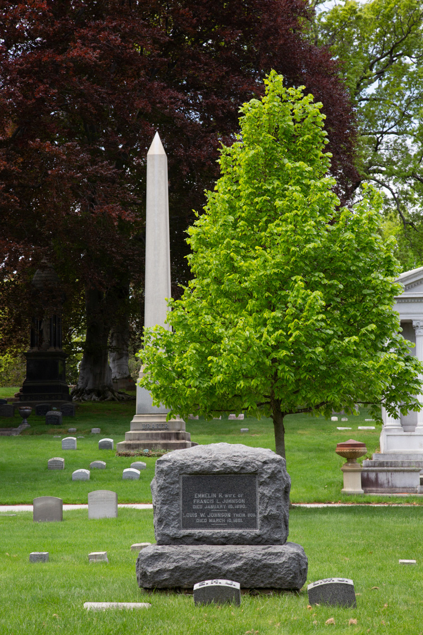 Woodlawn-Cemetery -Landscape-Architectural-Photographer-Caryn-B-Davis